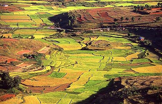 third image madagascar